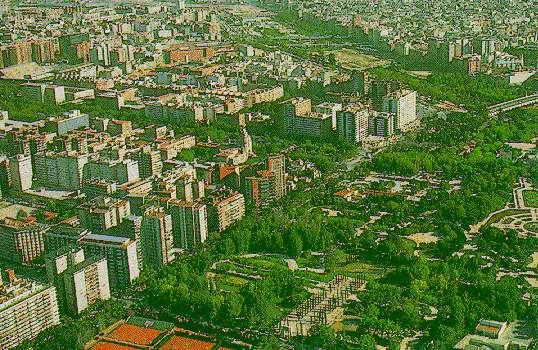 Valencia jardines for Jardines del real valencia
