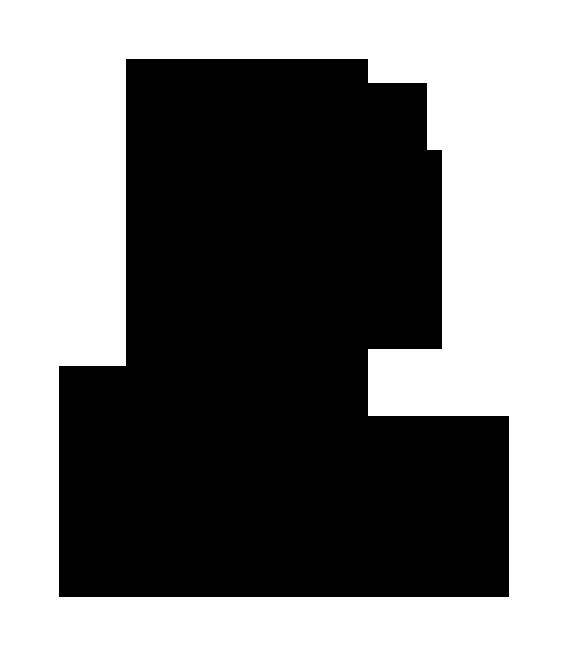 Marca upv secundaria negro300